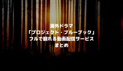 海外SFドラマ「プロジェクト・ブルーブック」Hulu・Amazonプライム・Netflixで観れる?【UFOモノ】