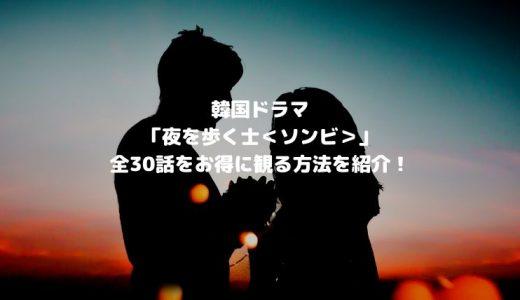 韓国ドラマ「夜を歩く士<ソンビ>」全話(1~30話)をお得に観る方法を紹介!【U-NEXT】